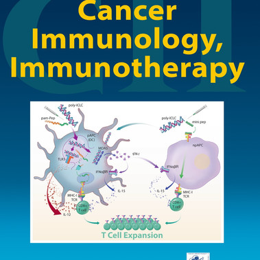 Role of MDA5 and Interferon-I in Dendritic Cells for T Cell Expansion by Anti-Tumor Peptide Vaccines