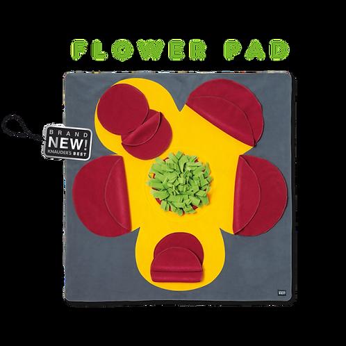 Knauder´s Best Flower Pad