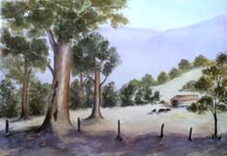 suep-trees
