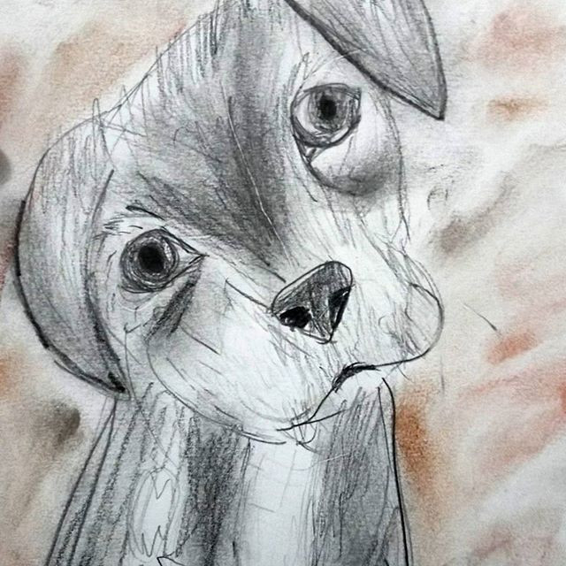DRAWING DOGS - SOLD OUT