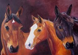 Jenny Smith. Acrylic on canvas.