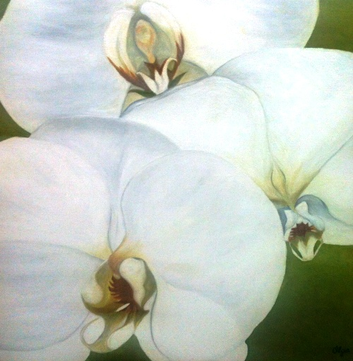 olga-orchid-2015