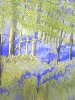 elaineb-lavenderlandscape