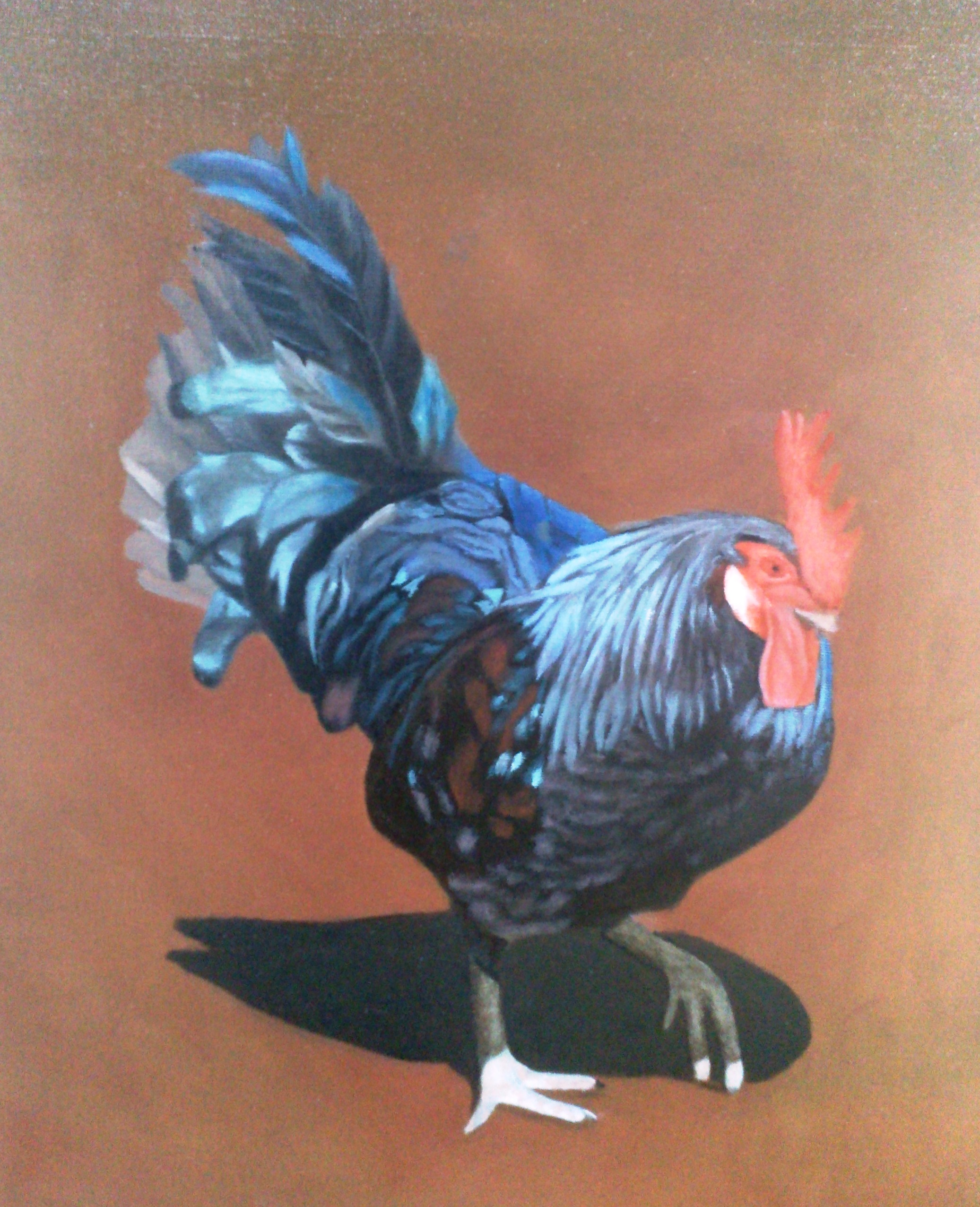 doug-rooster