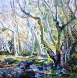 dianes-treeslight