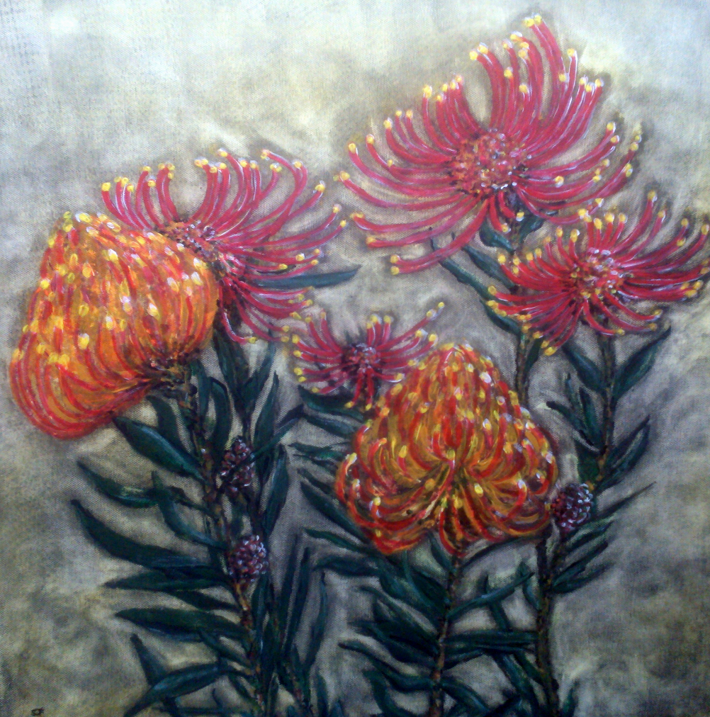 suef-protea