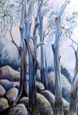 ross-bluetrees