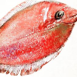 Fish printing fun... smelly studio!.jpg
