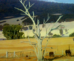 doug-harding-rural-2015