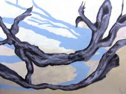 lissa-bingham-driftwood-july-2010