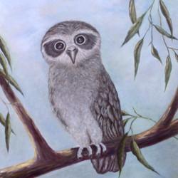 suep-owl