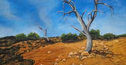 Diane Broadley. Acrylic on canvas.