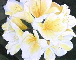 elain-flowers