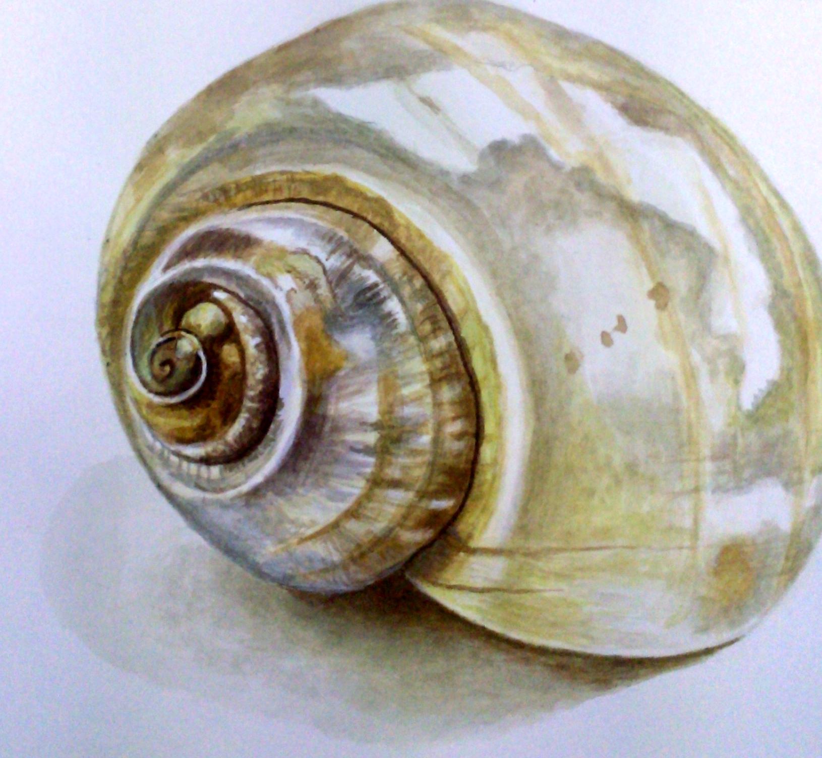 jene-shell