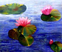 lissa-waterlillies