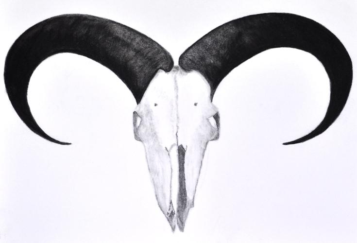 sueb-horns