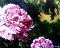 patc-flowers