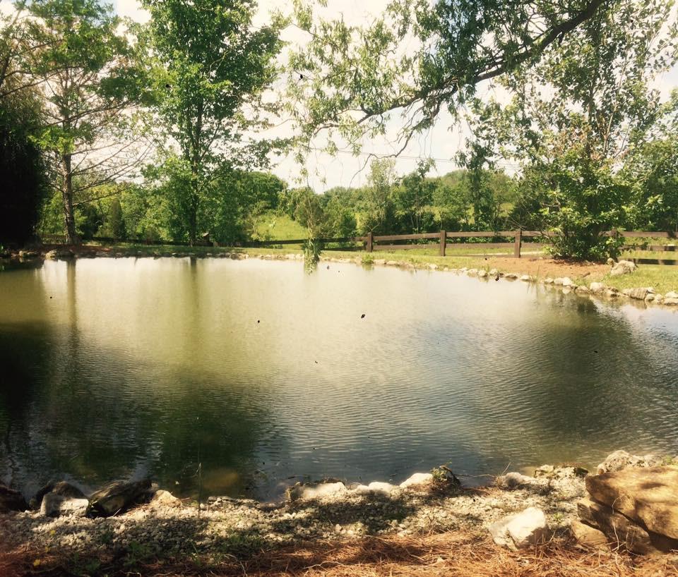 OPTO Lake