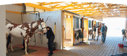 building_facilities
