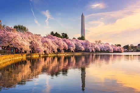Washington DC, USA at the tidal basin wi