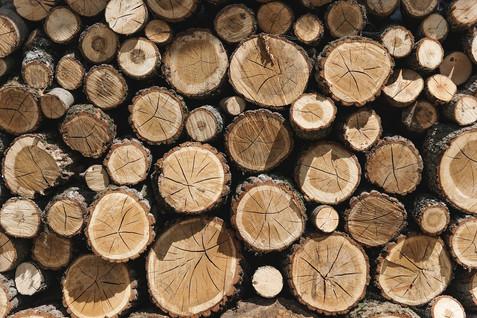 chopped-chopped-wood-cut-935866 s.jpg