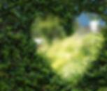 art-background-blur-255441.jpg
