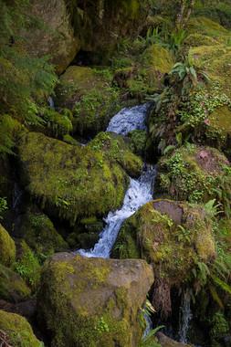 Oregon Waterfalls - Route 138