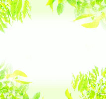 モバイル用メインビジュアル_アートボード 1 のコピー.jpg