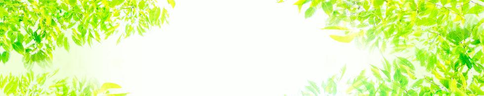 メインビジュアル-04.jpg