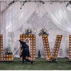 Svjetleći znak LOVE
