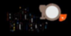 BDF logo.png