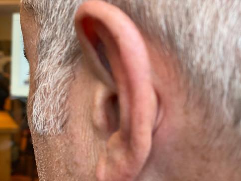 V4 Ear.jpg