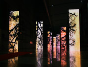 choi57_visual_performance_2009_SAOF_Brig