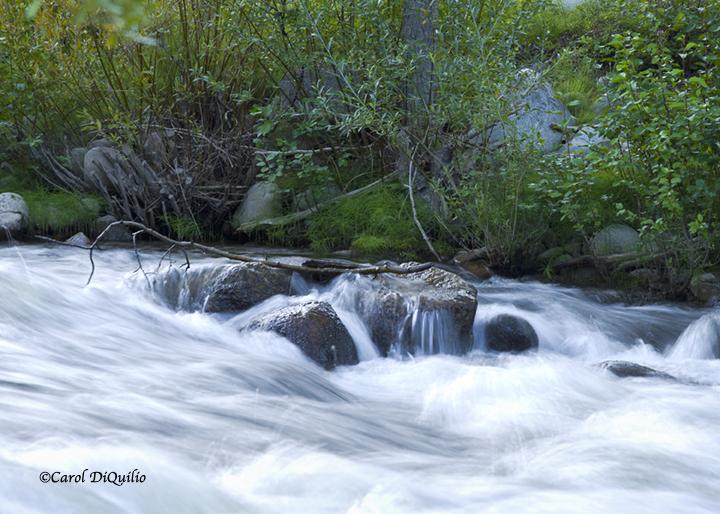River running R-29