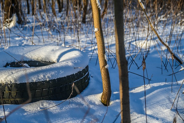 An old tire in the snow.