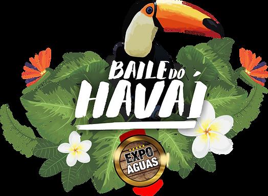 logo - Baile do havai 2018.png