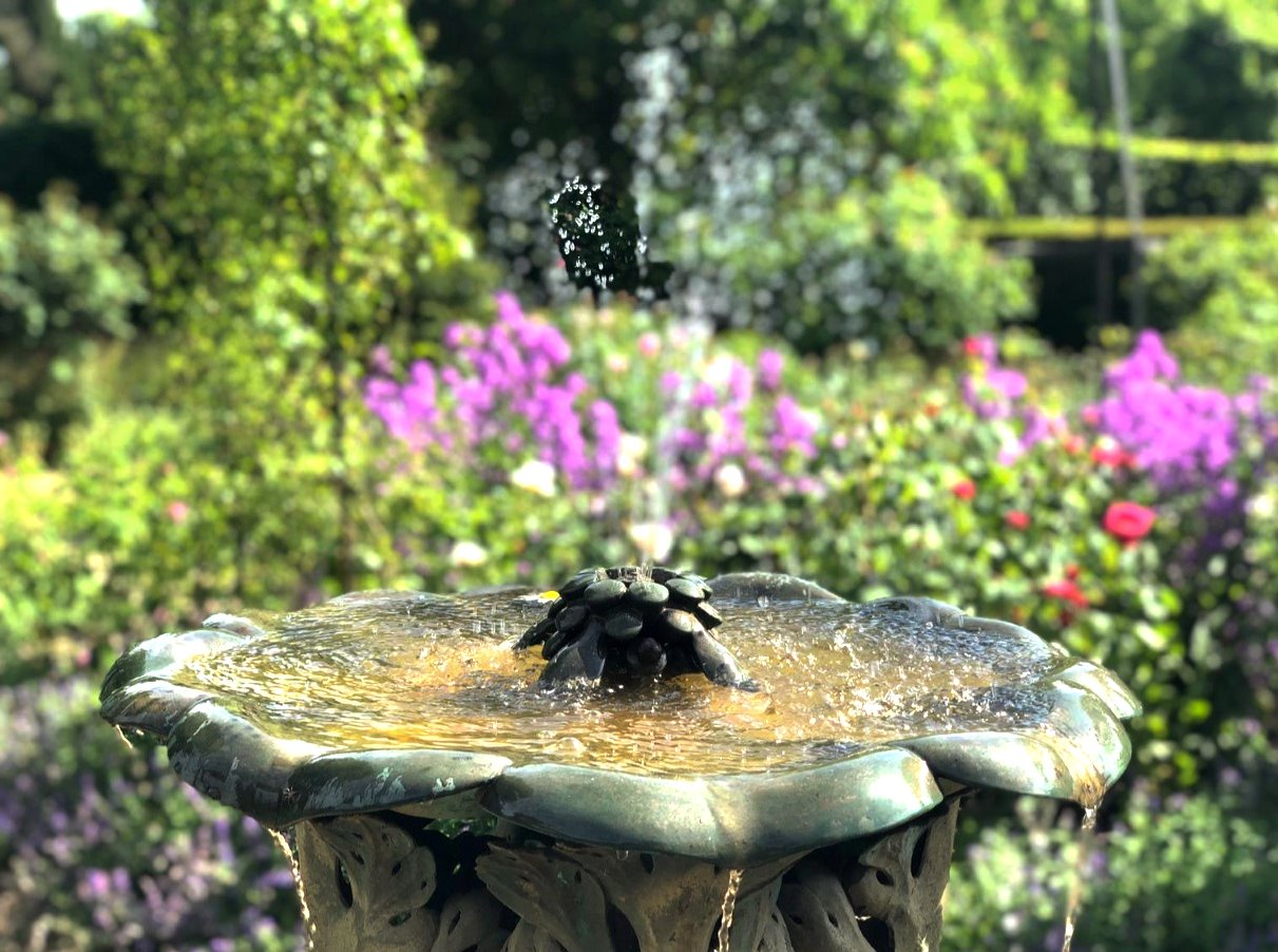 Fountain_edited.jpg