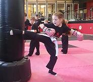 Martial Arts Kicking