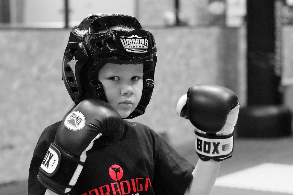 Martial Arts and Kickboxing