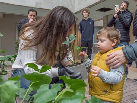 Jardinería y arquitectura, un punto de encuentro