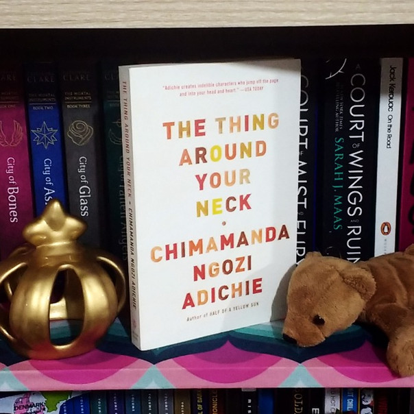 RESENHA: No Seu Pescoço (ADICHIE, Chimamanda Ngozi)