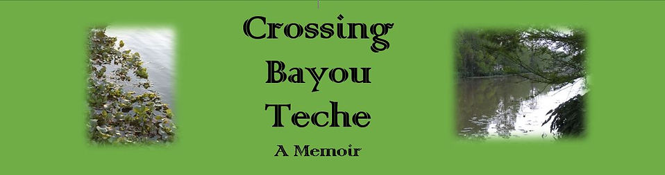 crossing bayou teche page banner.JPG