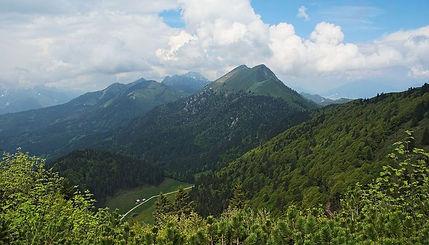 spring-scene-mountain-side.JPG
