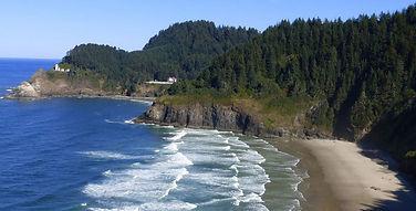 Oregon-coastal-trees.JPG