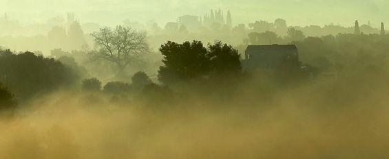 Foggy-Morning-2.JPG