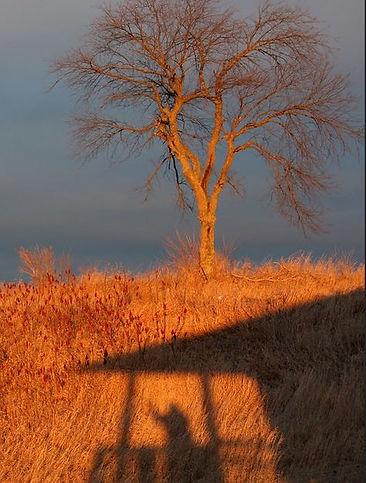 waving-goodbye-shadow.JPG
