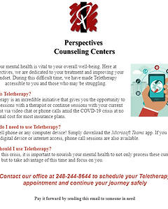 Perspectives of Troy Teletherapy.png