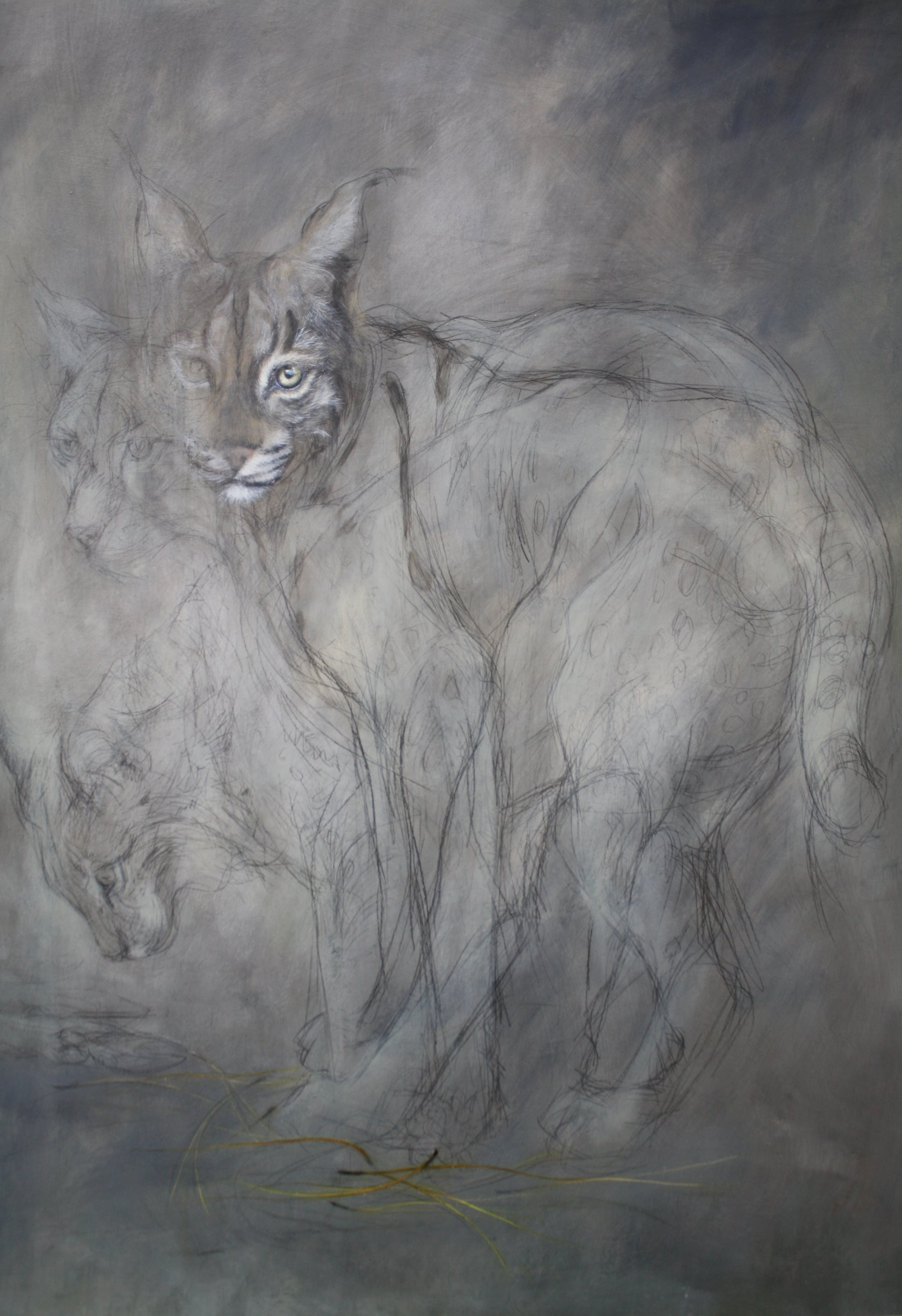'Lynx with pine needles'