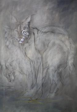 'Lynx with pine needles'