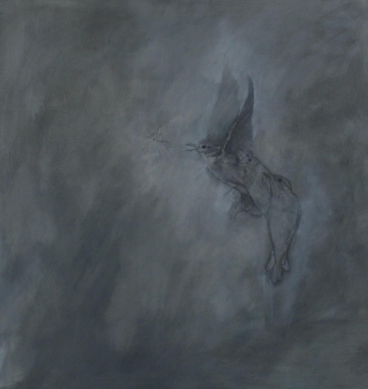 'Spotted Flycatcher'